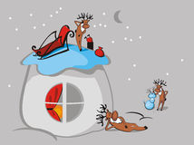 Santa's reindeer Royalty Free Stock Images