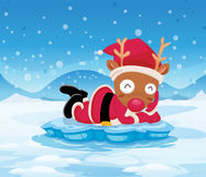 Santa's reindeer above the iceberg Royalty Free Stock Photos