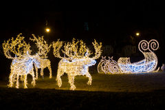 Santa's reindeers and sleight Stock Images