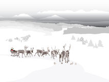 Santa's sleigh Royalty Free Stock Photos
