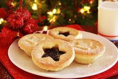 Santa's Treats Stock Images
