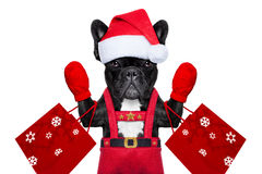 Santa selfie pies Zdjęcia Royalty Free
