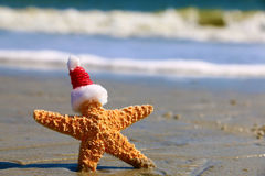 Santa Starfish Photo libre de droits