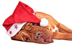 Is Santa tired? Stock Photography
