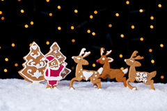 Santa welcoming his deers - food setting Royalty Free Stock Images