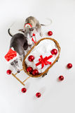 Santa whippets with christmas cart Royalty Free Stock Image