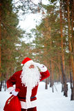 Santa in winter forest Royalty Free Stock Photography