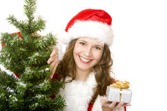 Santa Woman near fir tree holds Christmas gift Stock Images