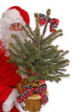Santa with xmas tree Stock Image