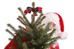 Santa with xmas tree Stock Images