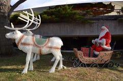 Santa At The Zoo Royaltyfri Bild