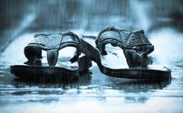 Santals sous la pluie Image stock
