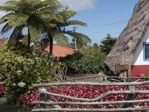 Santana in Madera è un bello villaggio sulla costa del nord è conosciuto dalle sue piccole case triangolari ricoperte di paglia D Fotografia Stock Libera da Diritti