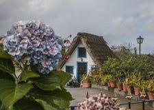 Santana, madera - tradycyjni domy na chmurnym dniu zdjęcia stock