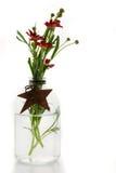 Santana Red. Argranthemum blossoms in vase stock photos