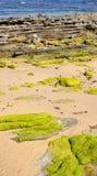 Santander sea Stock Photography