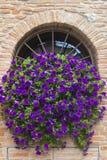Santarcangelo Di Romagna (Rimini, Italië) Stock Foto's