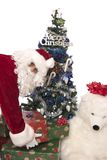 Santas gifts 6. Santa holding a few christmas presents for you near the christmas tree Stock Images