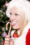 Santat helper licking candy cane Royalty Free Stock Photos