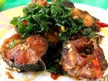 Santed äter fisken med chili Royaltyfria Foton
