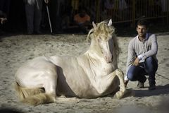 Santi Serra with one of his amazing horses in a public event in Lugo, Spain, in august 2016. Santi Serra, spanish horseman, with one pearled horse showing some royalty free stock photos