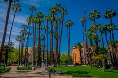 SANTIAGO-DE CHILE, CHILE - 16. OKTOBER 2018: Schöne Ansicht im Freien des chilenischen Parks mit einigen Palmen gelegen in lizenzfreie stockbilder