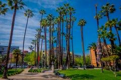 SANTIAGO-DE CHILE, CHILE - 16. OKTOBER 2018: Schöne Ansicht im Freien des chilenischen Parks mit einigen Palmen gelegen in stockbilder