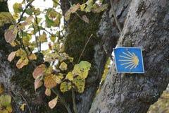 Santiago De Compostela znak na prośby drzewie obraz stock