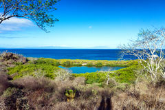 Santiago Island Landscape Royalty Free Stock Photo