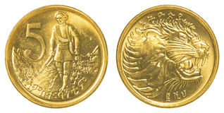 5 santim ethiopian moneta Obraz Royalty Free