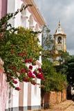 santo της Βραζιλίας antonio church de matriz tiradentes Στοκ Εικόνες