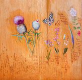SANTO ANTÓN, ESLOVAQUIA - 26 DE FEBRERO DE 2014: Dibujos de flores y de plantas del zar búlgaro Ferdinand Coburg Fotografía de archivo