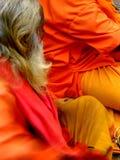 Santo del azafrán Foto de archivo libre de regalías