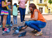 Santo Domingo, Dominican Republic. Woman feeds pigeons on Columbus Park, Colonial Zone of Santo Domingo. Santo Domingo, Dominican Republic. Woman feeds pigeons Royalty Free Stock Photography