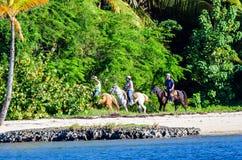 SANTO DOMINGO, RÉPUBLIQUE DOMINICAINE - 29 OCTOBRE 2015 : Chevaux d'équitation sur la plage Image libre de droits