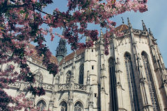 Santo Elizabeth Cathedral en Kosice, Eslovaquia Imagen de archivo libre de regalías