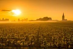 Santo Emilion Sunrise, viñedo de Burdeos, Francia foto de archivo libre de regalías