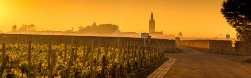Santo Emilion Sunrise, viñedo de Burdeos, Francia imágenes de archivo libres de regalías