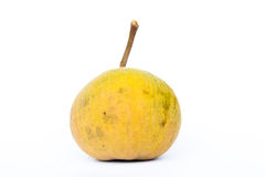 Santo fruit Royalty Free Stock Photos