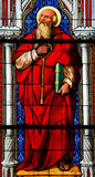 Santo Jerónimo Imágenes de archivo libres de regalías