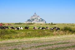 Santo Miguel - Normandía - Francia de Mont Fotografía de archivo libre de regalías