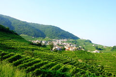 Santo Stefano in the Valdobbiadene prosecco region Stock Photos