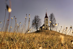 Santo Thomas Church, Eslovenia Imágenes de archivo libres de regalías