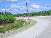 Santo Tomas-Carmen Road com a banana de Cavendish de Tadeco Bana Fotografia de Stock Royalty Free