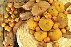 Santol和缅甸葡萄小组编织帽子背景 库存图片