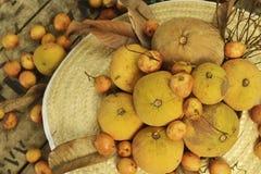 Santol和缅甸葡萄小组编织帽子背景 免版税库存照片