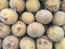 Santol background in thailand royalty free stock image