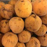 Santol / Cottonfruit (Sandoricum koetjape) Royalty Free Stock Photo