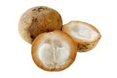 Santol-Früchte stockbild
