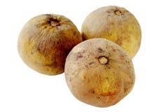 Santol-Frucht lizenzfreies stockbild